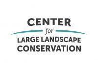 Large Landscape News Logo