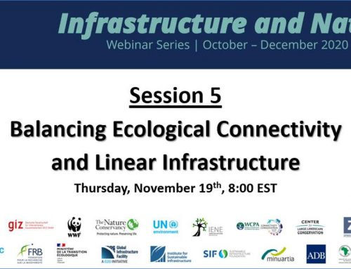 "Contributions to ""Infrastructure and Nature Webinar Series"""