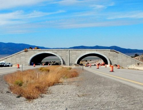 New! Wildlife Crossings Communications Toolkit