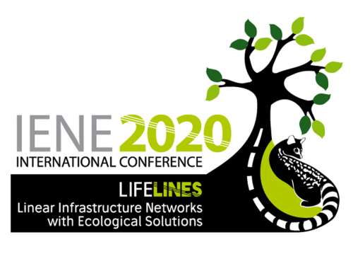 "Contributions to the Virtual IENE International Conference ""LIFE LINES"""
