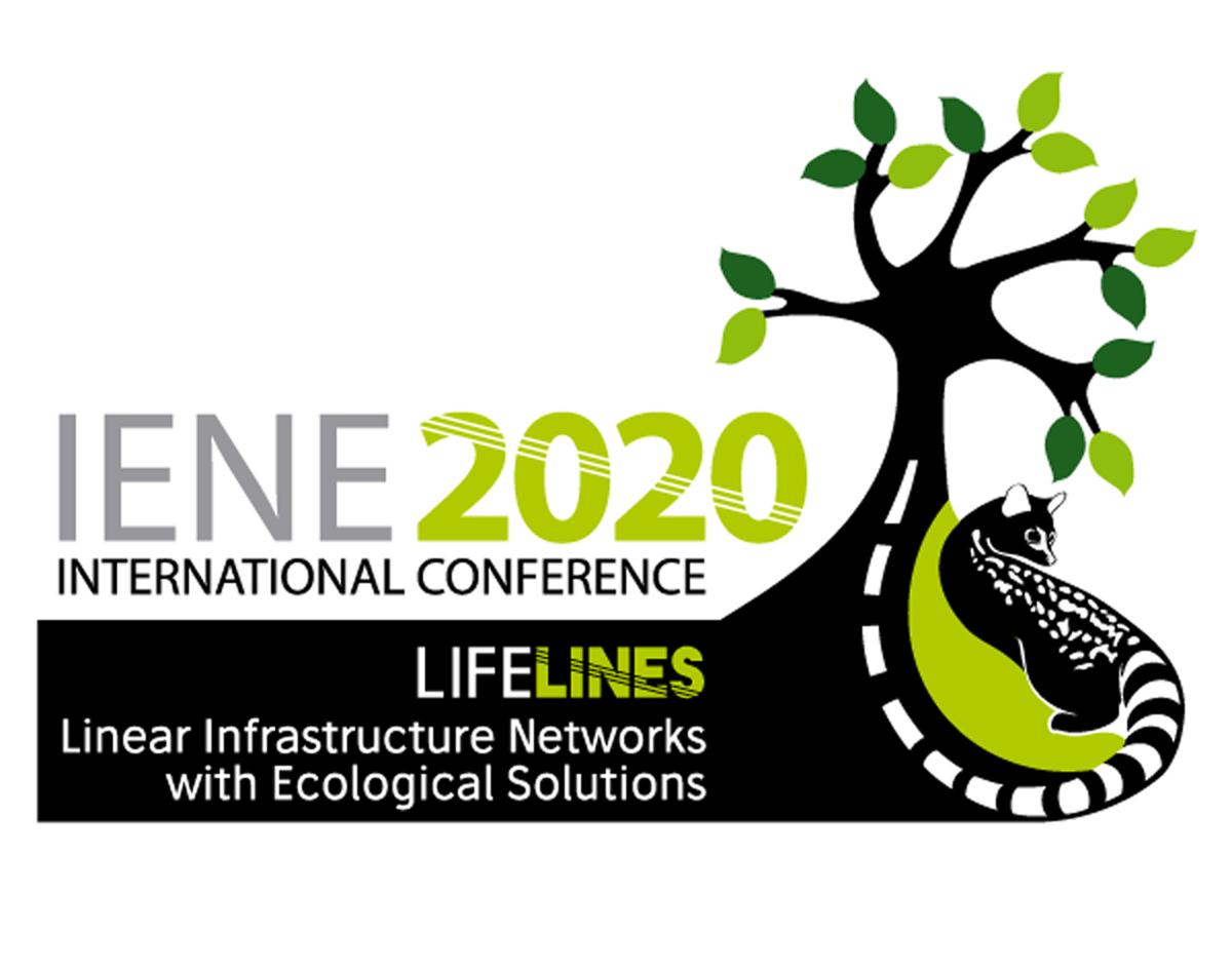 IENE Conference Logo
