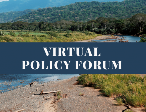 Virtual Policy Forum Series on the Future of Landscape Conservation