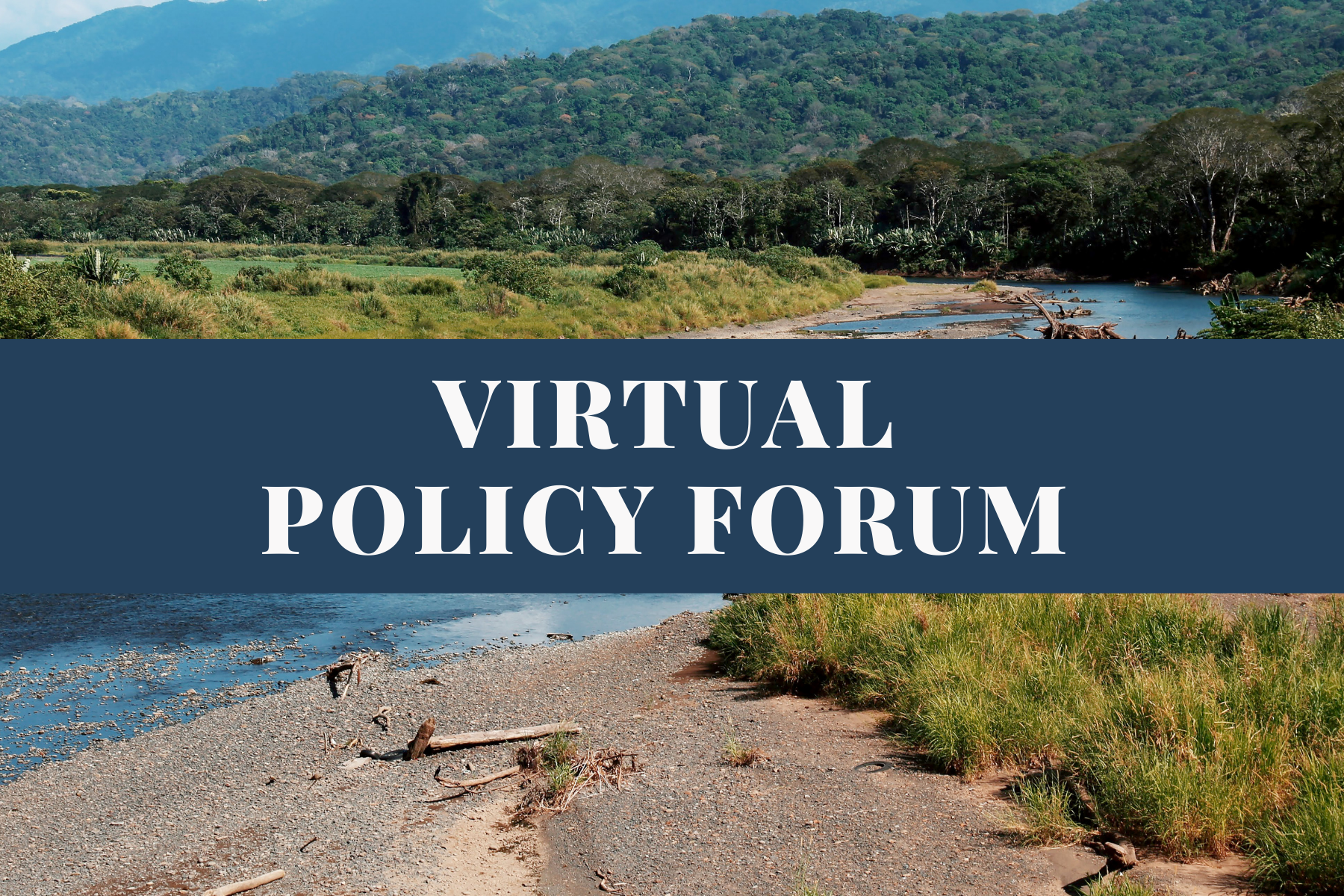 Virtual Policy Forum