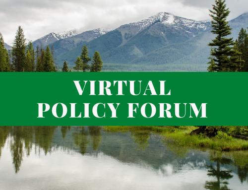 Virtual Policy Forum Series Spring Webinar