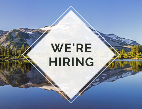 Career Opportunity: Chief Operating Officer